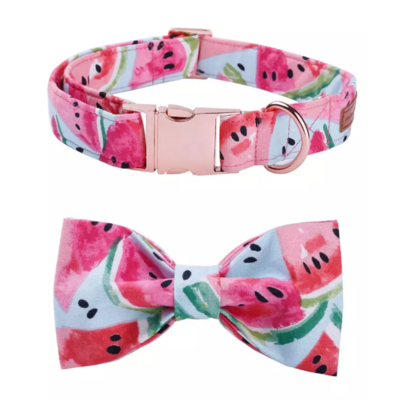 Fancy Watermelon Dog Collar and Bow Set