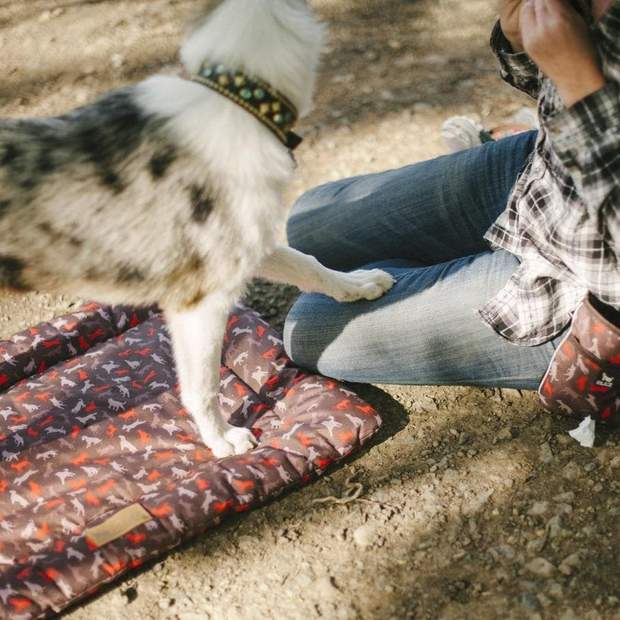 Scout & About Outdoor Dog Chill Pad