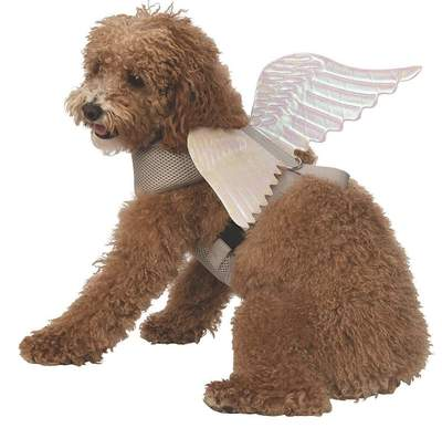 Dog Collars - Deluxe Angel Wings Dog Harness