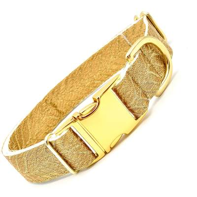 Dog Collars - Golden Leaf Gilded Fancy Dog Collar