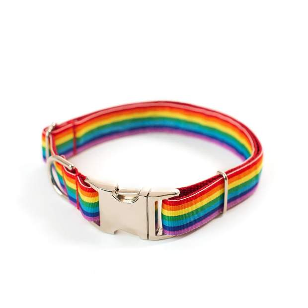 Dog Collars - Pride Rainbow Dog Collar
