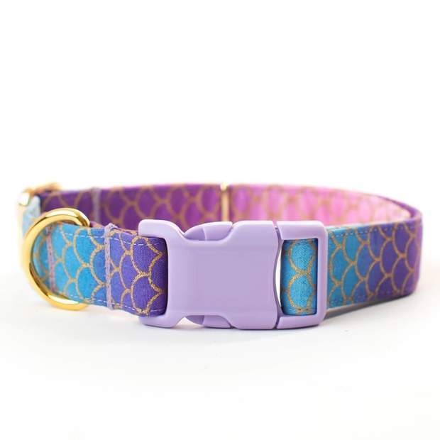 Dog Collars - Purple Mermaid Dog Collar - The Sirena