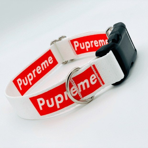 Dog Collars - The Pupreme Dog Collar | VRBH