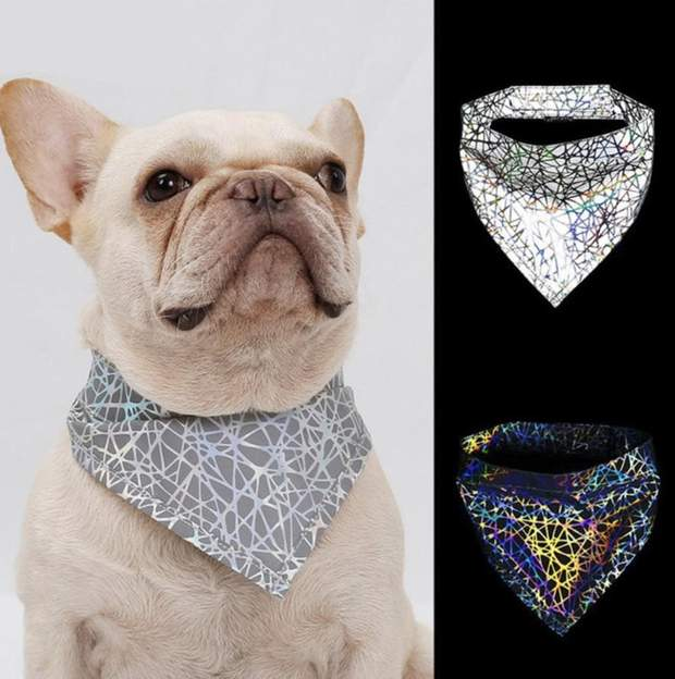 Color Changing Holographic Reflective Dog Bandana