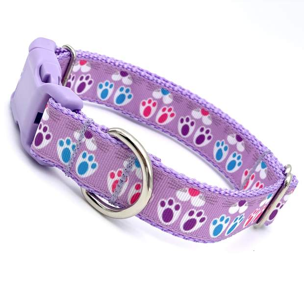 Easter Bunny Dog Collar